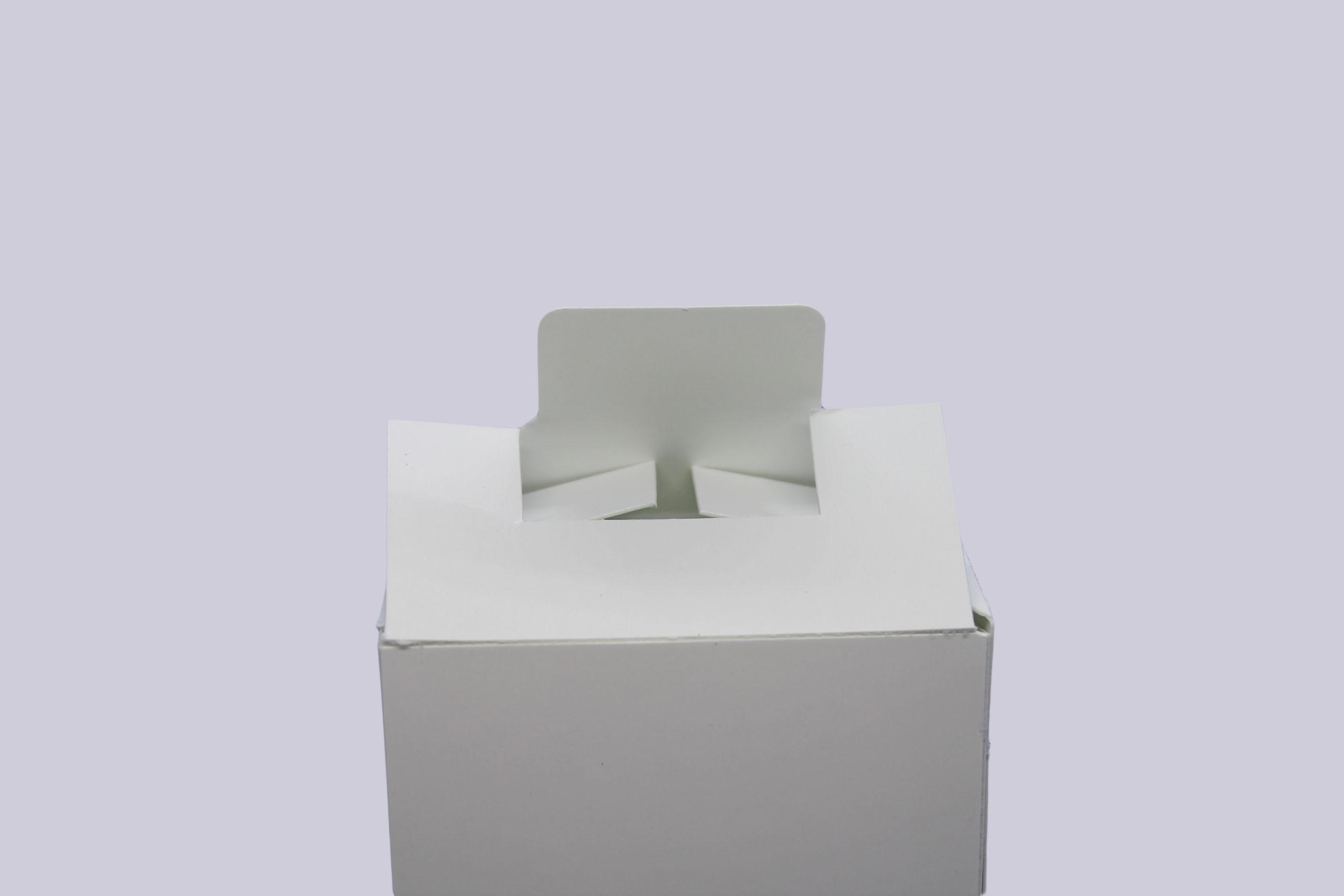 Faltschachteln mit Steckboden - Ansicht des Deckels