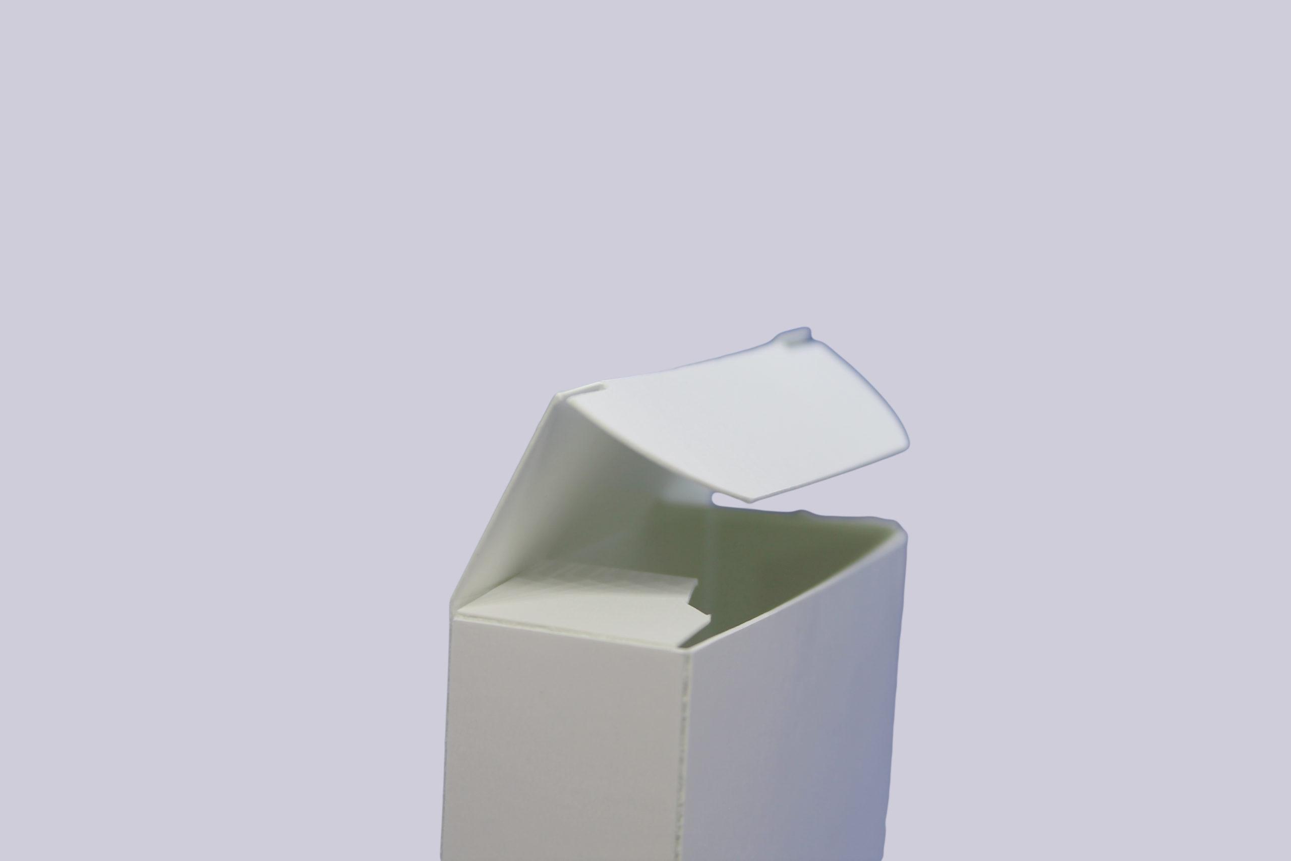 Faltschachteln mit Einstecklaschen - Ansicht des Deckels
